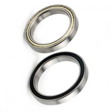 Nzsb 61902 2RS/2rz Deep Groove Ball Bearings Size: 15*28*7 High Precision Bearings