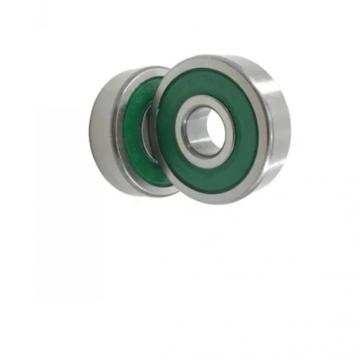 SKF NSK 6313 Deep Groove Ball Bearing for Auto Parts