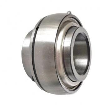 6206 6204 C3 6304 SKF 6203 6005 Zv Bearing 62/22