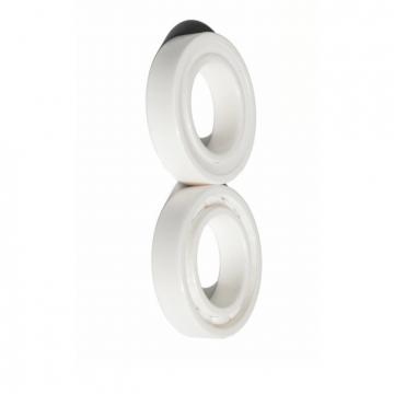 SKF Germany Bearings Deep Groove Ball Bearing Zz 2RS Rz 2z RS Types