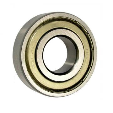 SKF Spare Parts 6304 2rsh/C3 6305 2RS1 6006 2RS1 & FAG 61907 2rsr 6205 2rsr C3 6206 2rsr Deep Groove Ball Bearing for Agriculture/Machinery/Motorcycle