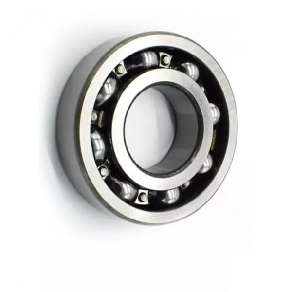 Deep Groove Ball Bearing for Instrument, Wire Cutting Machine Rls 4 Rls 4-2RS1 Rls 4-2z 61802 61802-2RS1 61802-2z 61902 61902-2RS1 61902-2rz 61902-2z 16002 #1 image